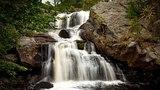 Звуки живой природы и успокаивающей музыки / Звук ручья, пение птиц и приятные звуки пианино