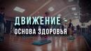 Движение - основа здоровья ДЗ по тренингу