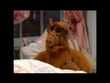 Alf Quote Season 3 Episode 26_Я знаю