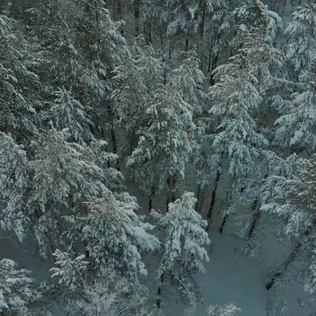 Nastya_wanderlust video