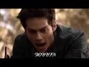 Волчонок самые смешные моменты в сериале 2 часть (3 сезон)