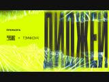 Swanky Tunes & Елена Темникова - Диджей (Official audio, 2018)