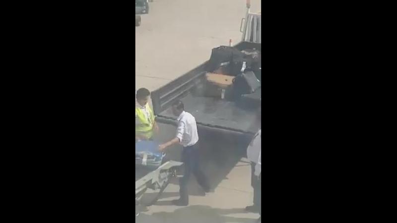 Что делают с багажом в аэропорту