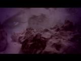A.Shine - Never Leave - 720HD - VKlipe.com