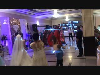 Циганська Шатріца -Шоу-балет WellART