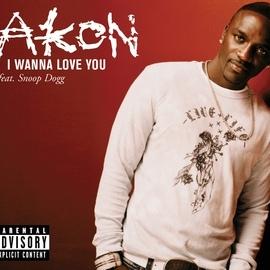 Akon альбом I Wanna Love You