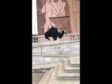 Islam Kunakkulov-Training day