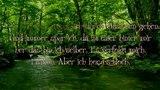 Nargaroth - A Whisper Underneath the Bark of Old Trees w lyrics