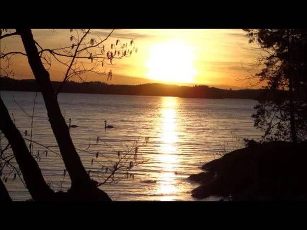 Закат солнца на реке. ФУТАЖ.