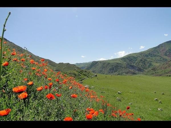 Баҳори Тоҷикистон - Spring of Tajikistan
