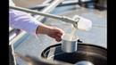 Проект 100 шагов Нәтиже Что стоит за признанием молочного гиганта
