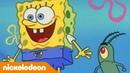 Губка Боб Квадратные Штаны | 1 сезон 18 серия | Nickelodeon Россия