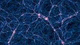 REED &amp CAROLINE - Dark Matter (Official Video)