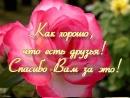 Doc50576452 410313663