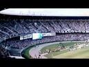 Torcida do Galo - A Massa Atleticana (Atlético Mineiro Fans)