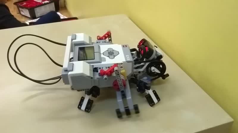Робот Муха Робототехника в Совёнке Некрасовка