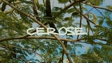 Cerose Truth And Kulture Music Video #Jamaica