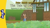 Peter Rabbit 2 Into the Garden Classics Little Fox Animated Stories for Kids