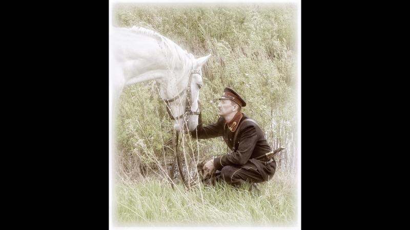 Егорушка (Монолог милицейского коня)