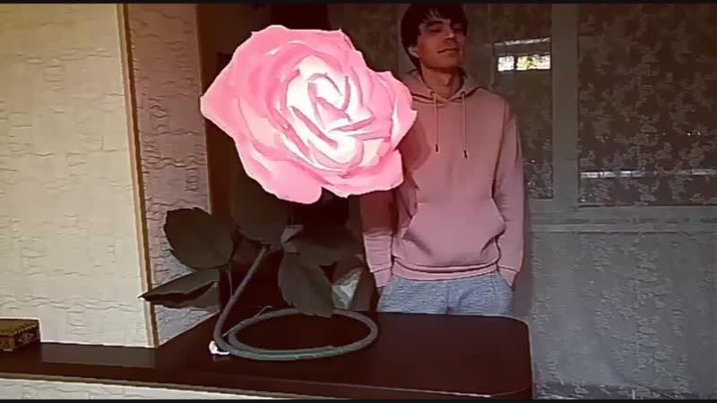Девочки заказываем розу ночник Цвет бутона на выбор Пишите в директ
