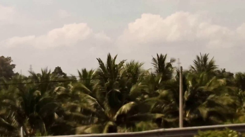 Amazing view in islands near Saigon City, Vietnam 7