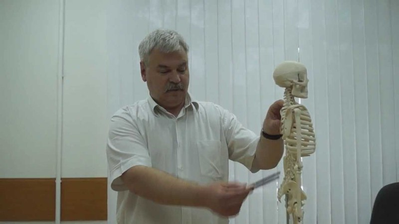 БОЛИ В НИЖНЕЙ КОНЕЧНОСТИ (боль в ноге, разъяснения врача о причинах болей в ноге)