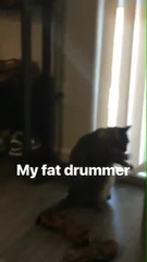 My Fat Drummer