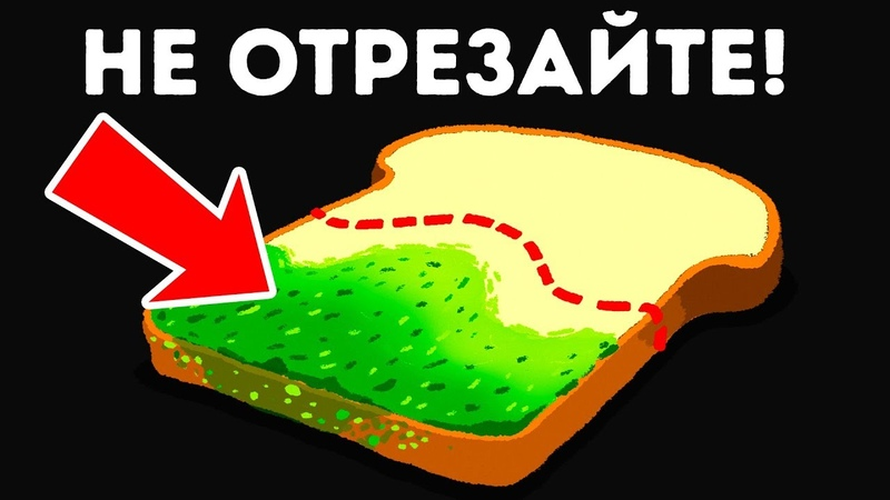 Что Произойдет, Если вы Съедите Хлеб, Покрытый Плесенью?
