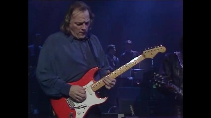 David Gilmour w⁄ Seal - Hey Joe