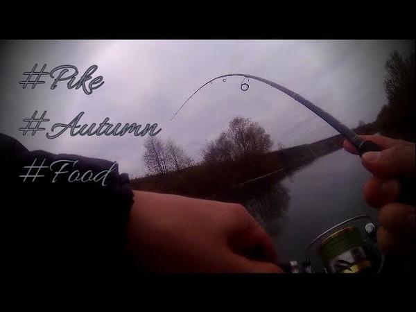 Капризная рыба Осенний джиг