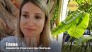 Отзыв от Елены из Владивостока о йога туре в Краби, Таиланд   ЙогаТур.РФ
