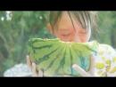 Sakura Ebi's「Shakunetsu to Ice Cream」MV