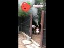 Пикник в гостях у семьи Иеда, ст. Азовская 15.07.18