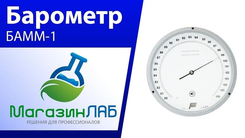 МагазинЛАБ | Барометр Анероид БАММ-1