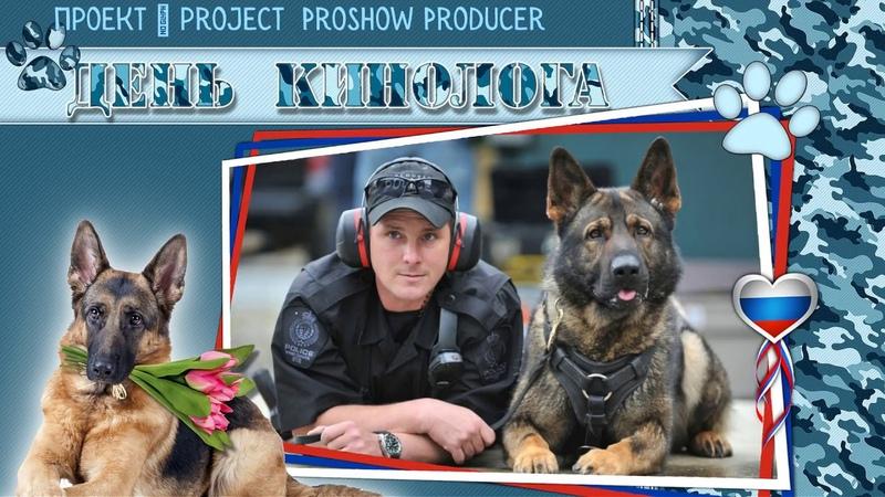 Другу кинологу I Friend of dog handlers ProShow Producer