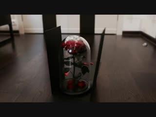 Шикарные розы в колбе. Вау-коробка в подарок!