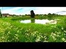 Земельный участок 15 соток в дереве Муромцево Волоколамского района Московской области