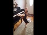 Новый композитор