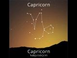 Созвездия и знаки зодиака Capricorn