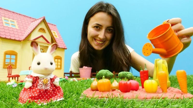 Kız oyunları. Sevcan bayan Tavşan için sebze topluyor