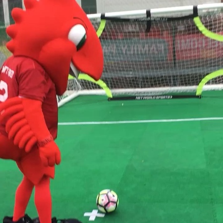 Mighty Red on Instagram Quick TBT to my top bins shot in the family park last season 😎👌 Skills LFC LFCFamily Mascot TrickShot""