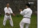 Karate do - Uechi Ryu (or Pangai Noon)