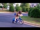 Пес Норман породы Бриар катается на велосипеде сам крутит педали