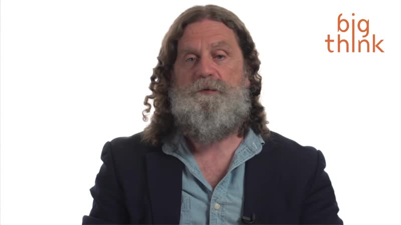 Is Moral Disgust Just Bad Evolution? / Robert Sapolsky