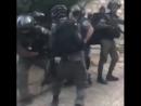 Savagery Heavily armed Israeli occupation soldiers brutalise Palestinian worshipper inside Al Aqsa Mosque القدس تنتصر