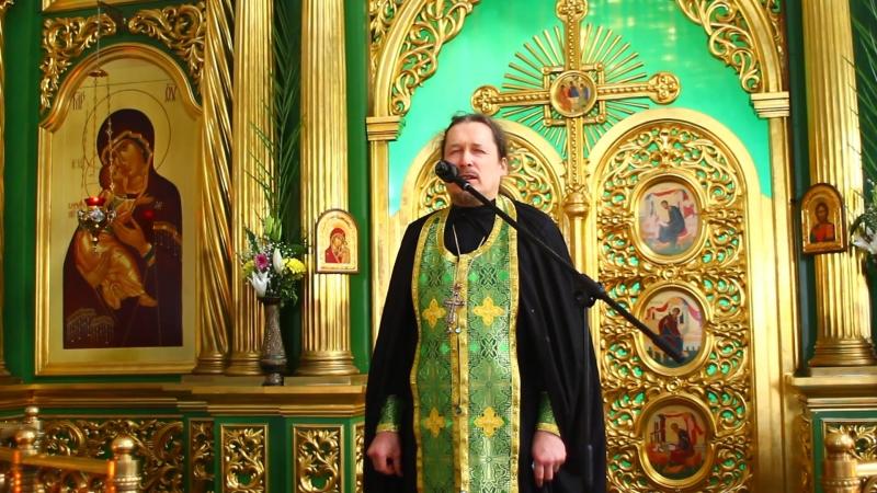 ВХОД ГОСПОДЕНЬ В ИЕРУСАЛИМ проповедь игумена Симеона Микушин