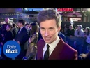 Eddie Redmayne talked to sheep for role Fantastic Beasts