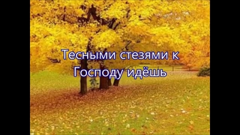 Осень золотая снова к нам пришла- дети.