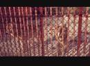 УБОЙНЫЙ БОЕВИК ДЛЯ ВЗРОСЛЫХ! ☠ ДЕТИ 90-Х ☠ Криминал, Боевик, Новые русские филь