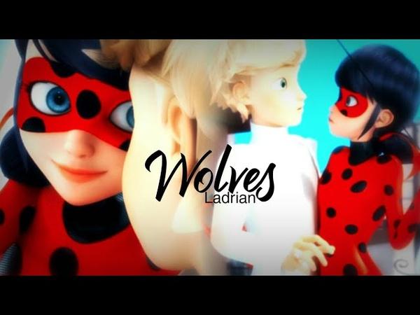 Ladrien | Adrien × Ladybug | Wolves